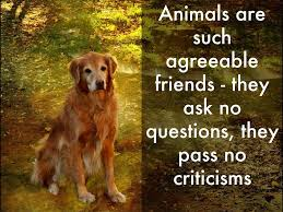 Animals Are Such Agreeable Friends They Ask No Questions They