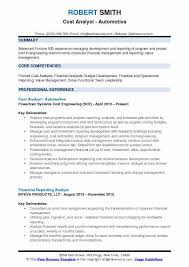 Resume Analysis Delectable Cost Analyst Resume Samples QwikResume