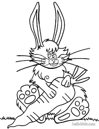 Rabbit With Carrot Coloring Page Cute