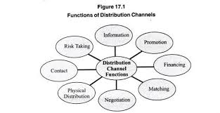 Channel Of Distribution Chart Distribution Channel Functions And Levels With Diagram