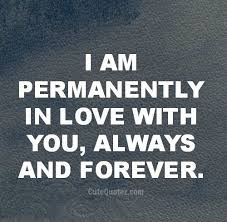 Love You Forever Quotes Best Always Forever I Will Be In Love With You Now That I Met You You