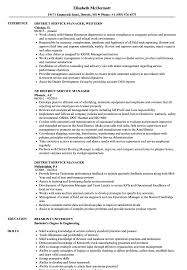 District Service Manager Resume Samples | Velvet Jobs