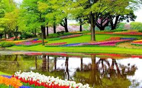 keukenhof spring garden open 22 march 13 may 2018