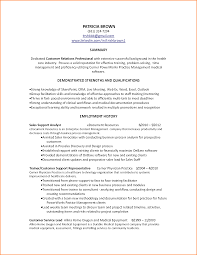 Resume Summary Examples Customer Service