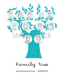 pedigree tree family tree chart genealogical tree family stock vector 538559125