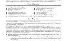 Cfo Resume Templates Cfo Resume Templates Finance Resume Examples ...