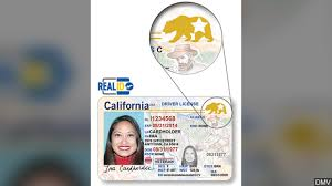 Kesq Id ' Requirements 'real Homeland Security Must Ca Change wxpq8pTPUa