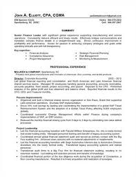 ideas of big 4 resume sample about resume - Big 4 Resume Sample