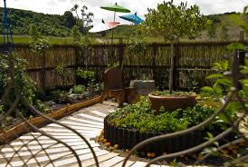 Small Picture Modern potager by Evergreen landscape design at Tauranga Garden