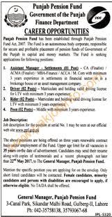 Punjab Pension Fund And Finance Department Job Jang Jobs Ads 05