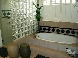 decoration bricks or glass blocks bathroom apartment decoration install a block shower wall walls