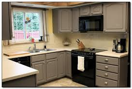 kitchen cabinets paint colors creative of painted kitchen cabinets ideas