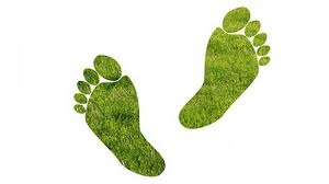 reduce your ecological footprint climate protection reset org reduce your ecological footprint