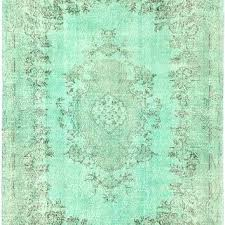 mint green rug x runner ruger