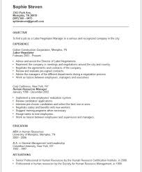 Resume Objectives Examples Interesting 60 Fast General Resume Objective Examples Fo A60 Resume Samples