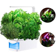 sprout led light 3 lighting modes indoor hydroponic herb garden kit hydroponics growing system for seeds lettuce thyme mint tomatoes with adjustable