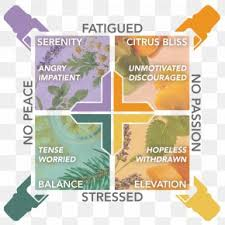 Aromatherapy Scent Chart Emotions And Essential Oils A Modern Resource For Healing