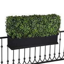 Artificial Window Outdoor Artificial Hedges In Window Boxes Boxwood Ivy Hooks
