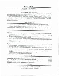 Resume Summary Statement Examples Customer Service Interesting Customer Service Resume Summary 44KDZ Customer Service Resume Summary