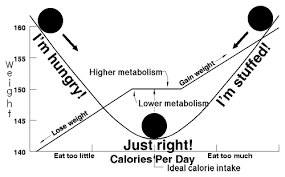 energy balance is the relationship between energy in food calories taken into the body through