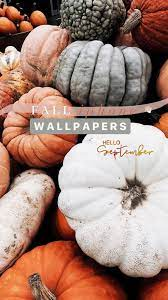 21 Aesthetic Fall Iphone Wallpapers You ...