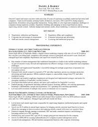 Attorney Resume Sample Template Experienced Lawyer Resume Samples Sample Pdf Curriculum Vitae Canada