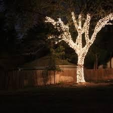 outdoor tree lighting ideas. Outdoor Lighting Thumbnail Size Tree Ideas Garden Decorations Landscape Hanging String Backyard Yard Christmas D