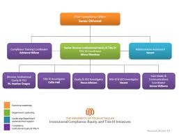 Organizational Chart Institutional Compliance Equity And