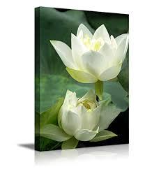 canvas prints wall art white lotus flower and green lotus leaf modern wall decor on lotus leaf wall art with amazon canvas prints wall art white lotus flower and green