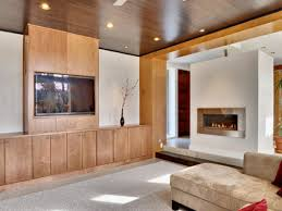 image of contemporary fireplace inserts with wood ceiling