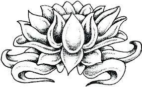 Coloring Pages Of Flowers For Adults Flower Printable Coloring Pages