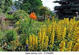 48 Best English Cottage Gardens Images On Pinterest  English Romantic Cottage Gardens