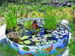 kid pool garden
