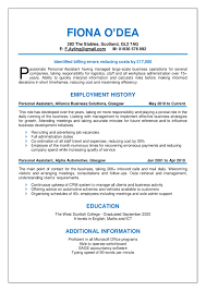Chronological Resume Template The Trusted Format