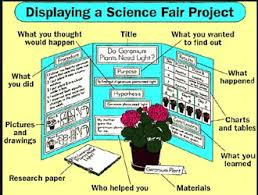 Science Project Guide