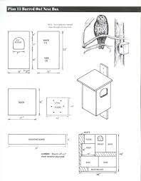owl house plans bluebird house plans