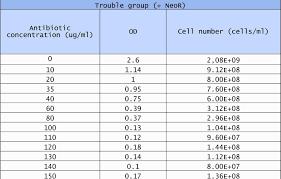 Gantt Chart Google Spreadsheet Or Free Gantt Chart Template