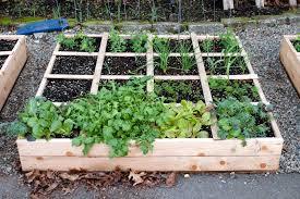 building a raised vegetable garden bed building raised beds tom alphin with raised garden bed ideas vegetables