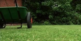 Image For Lawns Best Weed Killer For Lawns July 2019 Get Rid Of Weeds