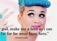 Katy-Perry-Funny-Quotes-6.jpg via Relatably.com
