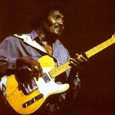 freddie king equipboard® albert collins