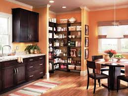 Pantry For Kitchens Free Standing Kitchen Pantry Free Standing Kitchen Pantries Door