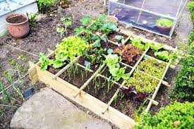 how to build a vegetable garden. Garden Plans For Beginners 5 Easy Vegetable Ideas Flower . How To Build A