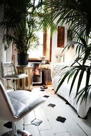 bohemian inspiration moroccan tables and huge jungle houseplants