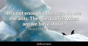 Thoreau Quotes Inspiration It Is Not Enough To Be Busy So Are The Ants The Question Is What