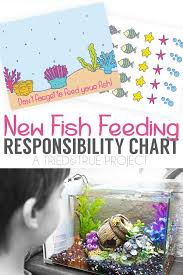 New Fish Responsibility Chart Tried True Creative
