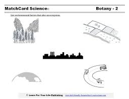 Excel. science for kids worksheets: Ecology Lesson Plan Science ...