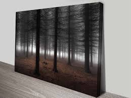 dark wood forest atmospheric photographic ready to hang wall art on cheap canvas wall art australia with canvas prints cheap high quality wall art pictures blue horizon