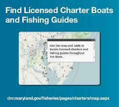 Striped Bass Maryland Fishing Regulations 2019