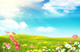 free desktop pictures of spring wide wallpapers